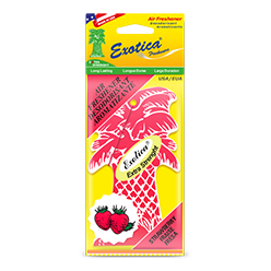 Palm Tree Counter Display 1-Pack. Strawberry