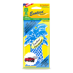 Palm Tree Counter Display 1-Pack. New Car