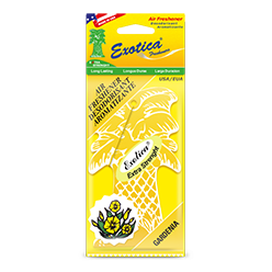 Palm Tree 1-Pack. Gardenia