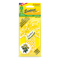 Palm Tree Counter Display 1-Pack. Vanilla